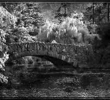 Bridge Over Troubled Waters by Crista Peacey