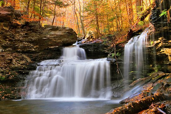 R. B. Ricketts Falls Under Fall's Golden Halo by Gene Walls