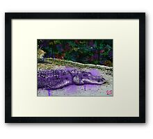 urban alligator Framed Print