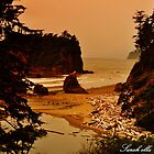 Ruby Beach by Sarah Ella Jonason