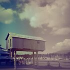 haus am see by marie223