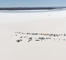 Aerial view of the DLRA Speedweek on Lake Gairdner, Australia, 2006 by Frank Kletschkus