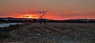 Sunset on Stubble by bazcelt