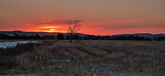 Sunset on Stubble by bazcelt