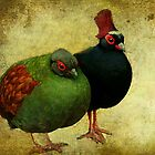 Odd Couple by EvaMarIza