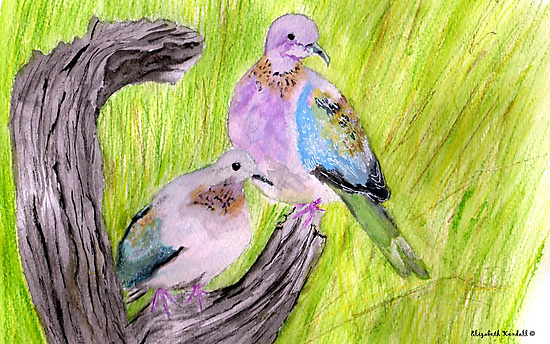 Two laughing doves  by Elizabeth Kendall