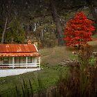 Autumn Cottage, Daylesford, Victoria by Julie Begg
