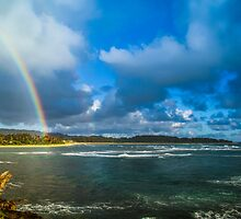 Oahu Bow by Randy Turnbow