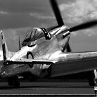 Lady P51D by marty1468