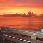 Sunset at Sharky's Fishing Pier Venice, FL by Ginger  Hamilton