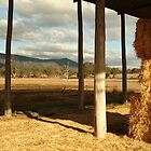 Joe Mortelliti Gallery - Hay Shed, Eversley, Mt Cole State Park, western Victoria by thisisaustralia