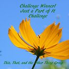 Banner for challenge Winner - Just A Part of It by quiltmaker