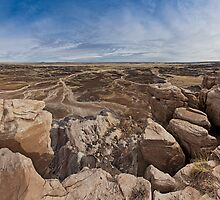 Petrified Forest National Park by Zero Dean