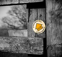 Footpath Sign Berkshire England by mlphoto