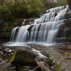Liffey Falls. by Warren  Patten