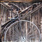 Photography Studio door/Bicycle built for one? by Nancy Richard