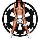 May the 4th be with you 2013 by simonbreeze