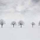 Three degrees of separation by redtree