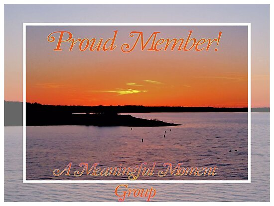 Banner - AMM - Proud Member by aprilann