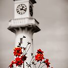 Roath Park Lighthouse Cardiff Wales 2 by mlphoto