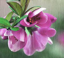 Pink flower by RosiLorz