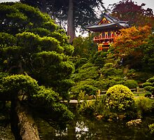 Japanese Garden San Francisco by mlphoto