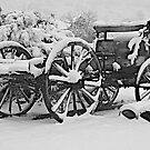 Wagon in Winter  -  B&W by John Butler