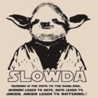 "Slowda ""Rushing is the path to the Dark Side. Rushing leads to hate, hate leads to anger, anger leads to suffering."" by Rob Price"