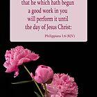 Philippians 1:6 by Deborah McLain