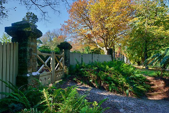 Garden Entrance, Mt Wilson by Chris  Randall