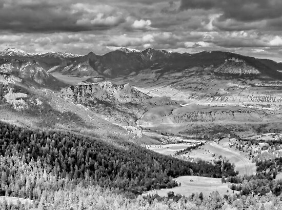 Yellowstone Wyoming in B&W by AnnDixon