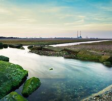 Booterstown, Ireland by Alessio Michelini