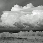 Cumulus Whitewash  by Jack Doherty