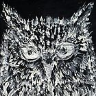 OWL PORTRAIT.2 by lautir