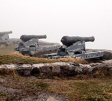 Cannons in the fog. by FER737NG