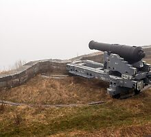 Cannon in the fog. by FER737NG