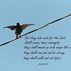 Isaiah 40:31 Greeting Card by Susan S. Kline