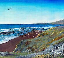Moonstone Beach by Peter Worsley