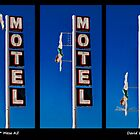 Starlite Motel - Diving Lady Composite #1 by LoneTreeImages