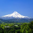Mt Hood and the Hood River Valley by Don Siebel