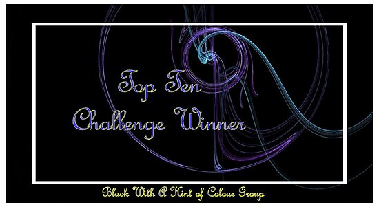 Banner - BWAHOC Top Ten Winner by DesignsbyApril