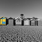 Black & White versus Colour by nicomelbourne