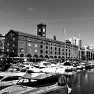 St Katherines Dock london by DavidHornchurch