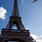 Seagull and Eiffel by RichardPhoto