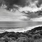 Monochrome Storm - Yanchep by Tyson Battersby