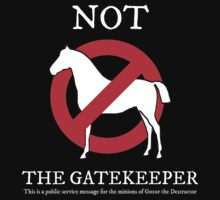 Not the Gatekeeper by Technohippy