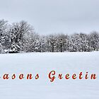 Seasons Greetings by webdog