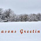 Seasons Greetings by webdog