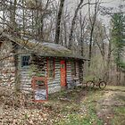Duwards Cabin in the Woods by wiscbackroadz