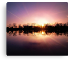 The Looking Glass Canvas Print